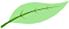 Bioverträglich Icon